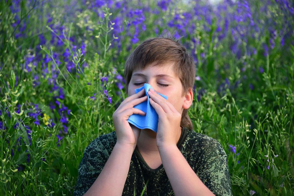 Zápaly dýchacích ciest- alergie
