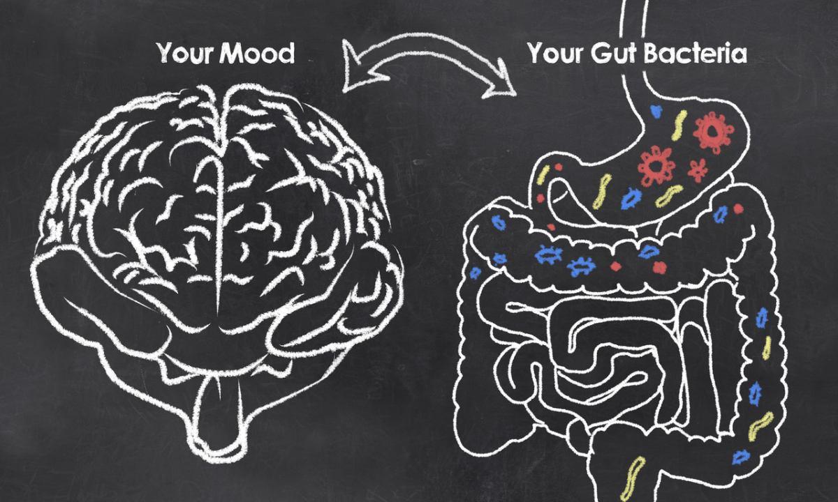 vplyv mikrobiómu na mozog