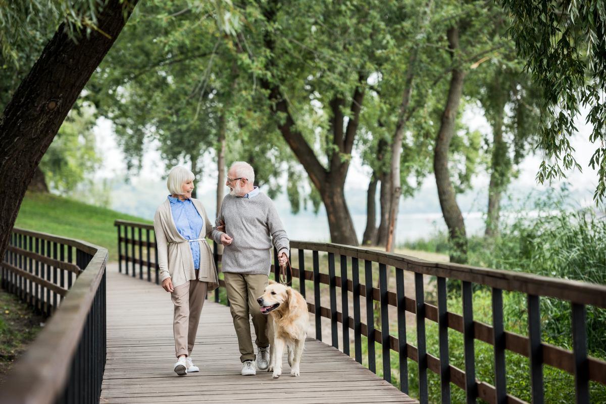 Párik seniorov so zlatým retríverom sa prechádza po drevenom moste
